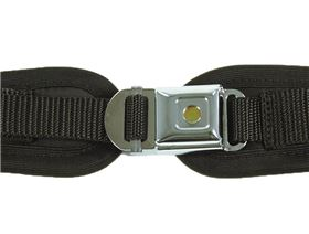 4-point pelvis belts with interlock