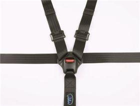 5-point belt